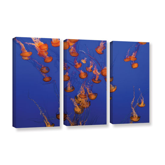 Brushtone Flowing Pacific Sea Nettles 2 3-pc. Gallery Wrapped Canvas Wall Art