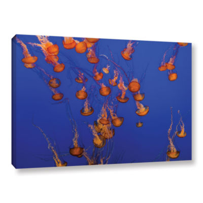Brushtone Flowing Pacific Sea Nettles 2 Gallery Wrapped Canvas Wall Art