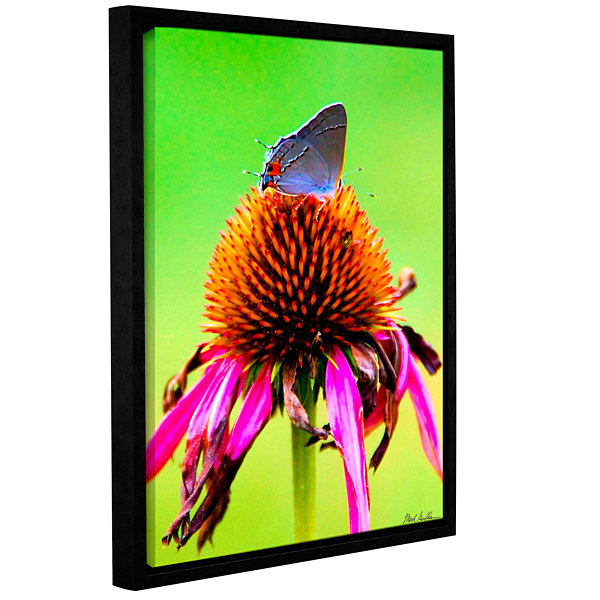 Brushtone Flower And The Butterfly Gallery WrappedFloater-Framed Canvas Wall Art