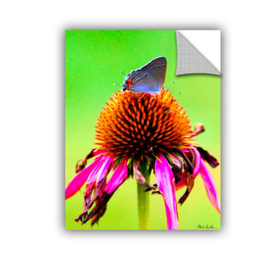 Brushtone Flower And The Butterfly Removable WallDecal