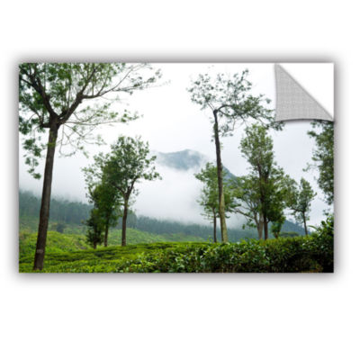 Brushtone Forest Fog Removable Wall Decal