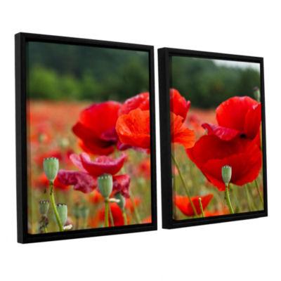 Brushtone Flower Field 2-pc. Floater Framed CanvasWall Art