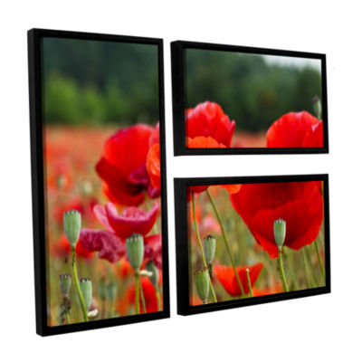 Brushtone Flower Field 3-pc. Flag Floater Framed Canvas Wall Art