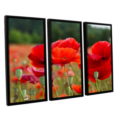 Brushtone Flower Field 3-pc. Floater Framed CanvasWall Art