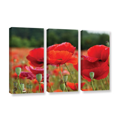 Brushtone Flower Field 3-pc. Gallery Wrapped Canvas Wall Art