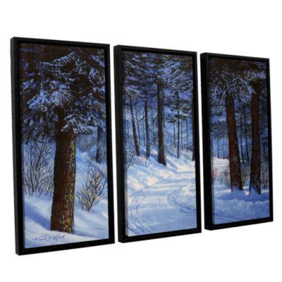 Brushtone Forest Road 3-pc. Floater Framed CanvasWall Art