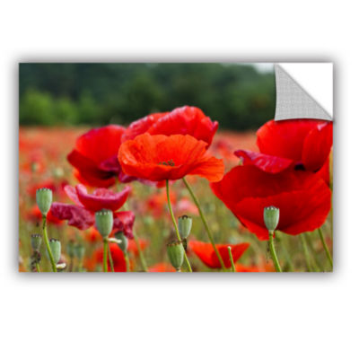 Brushtone Flower Field Removable Wall Decal