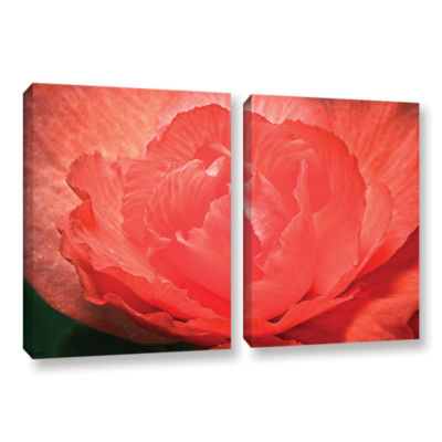 Brushtone Flower Petals 2-pc. Gallery Wrapped Canvas Wall Art