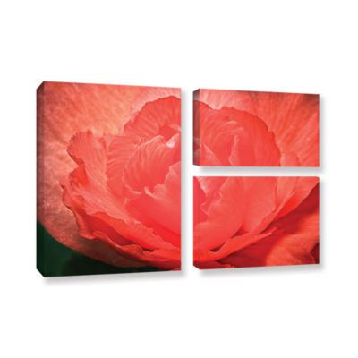 Brushtone Flower Petals 3-pc. Flag Gallery WrappedCanvas Wall Art