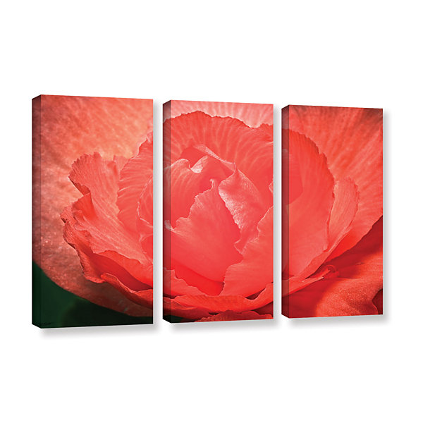 Brushtone Flower Petals 3-pc. Gallery Wrapped Canvas Wall Art