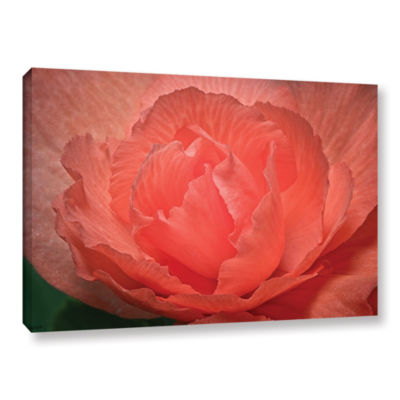 Brushtone Flower Petals Gallery Wrapped Canvas Wall Art