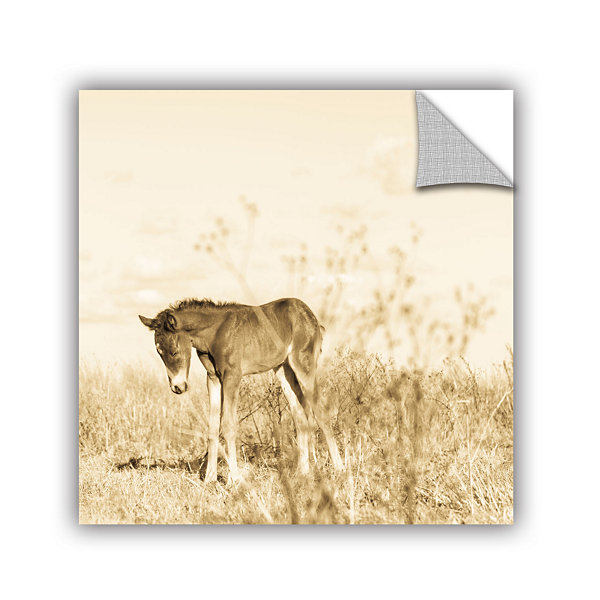 Brushtone Forlorn Removable Wall Decal
