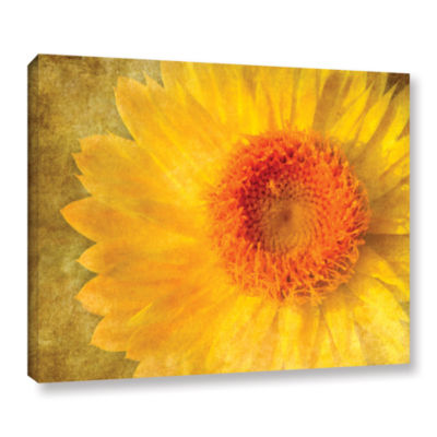 Brushtone Flowers In Focus 1 Gallery Wrapped Canvas Wall Art