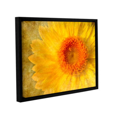 Brushtone Flowers In Focus 1 Gallery Wrapped Floater-Framed Canvas Wall Art