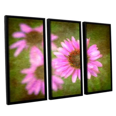 Brushtone Flowers In Focus 3 3-pc. Floater FramedCanvas Wall Art