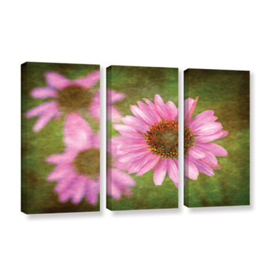 Brushtone Flowers In Focus 3 3-pc. Gallery WrappedCanvas Wall Art