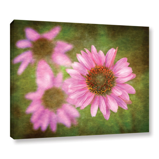 Brushtone Flowers In Focus 3 Gallery Wrapped Canvas Wall Art