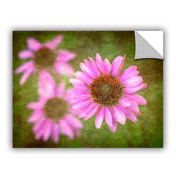 Brushtone Flowers In Focus 3 Removable Wall Decal