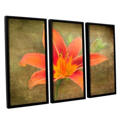 Brushtone Flowers In Focus 4 3-pc. Floater FramedCanvas Wall Art