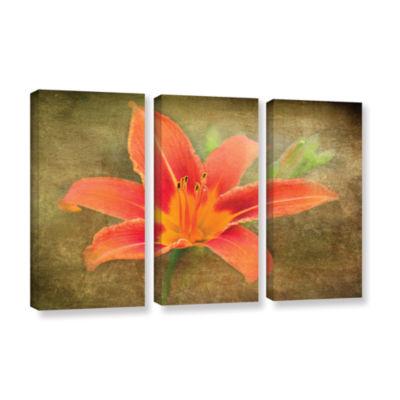 Brushtone Flowers In Focus 4 3-pc. Gallery WrappedCanvas Wall Art
