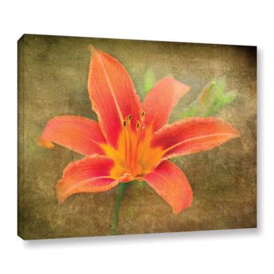 Brushtone Flowers In Focus 4 Gallery Wrapped Canvas Wall Art
