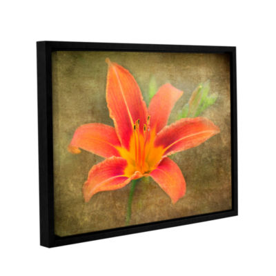 Brushtone Flowers In Focus 4 Gallery Wrapped Floater-Framed Canvas Wall Art