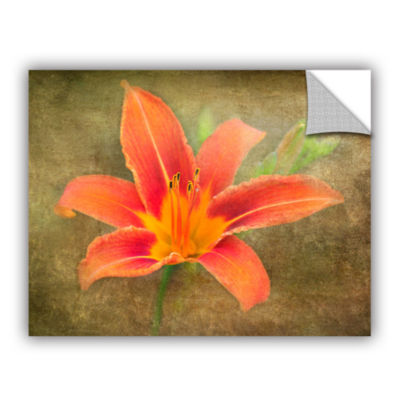 Brushtone Flowers In Focus 4 Removable Wall Decal