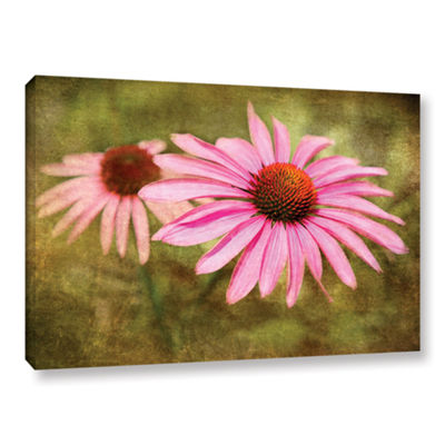 Brushtone Flowers In Focus 5 Gallery Wrapped Canvas Wall Art
