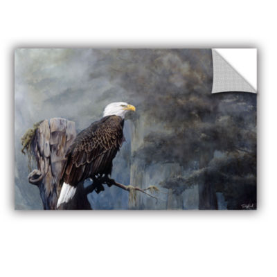 Brushtone Freedom Haze Removable Wall Decal