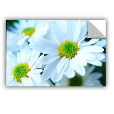 Brushtone Fresh Daisies Removable Wall Decal