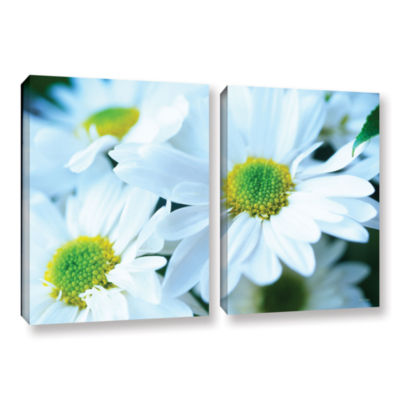 Brushtone Fresh Daisies 2-pc. Gallery Wrapped Canvas Wall Art