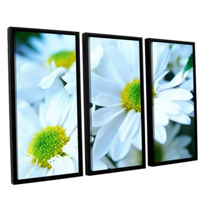 Brushtone Fresh Daisies 3-pc. Floater Framed Canvas Wall Art