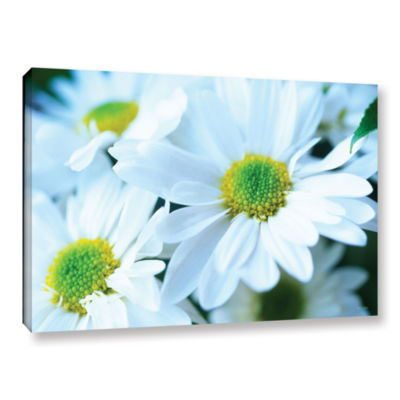 Brushtone Fresh Daisies Gallery Wrapped Canvas Wall Art