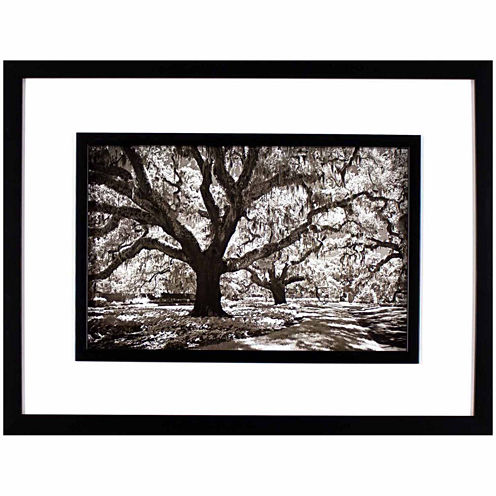 Decor Therapy Plantation Walk in Black Frame