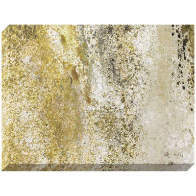 Decor Therapy Gold and Granite Stretched Canvas