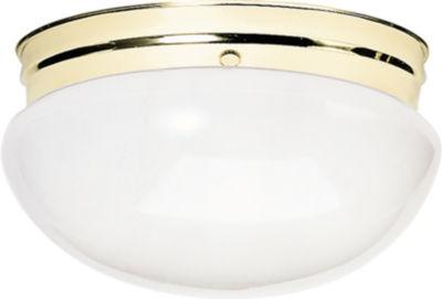 Filament Design 2-Light Polished Brass Outdoor Flush Mount