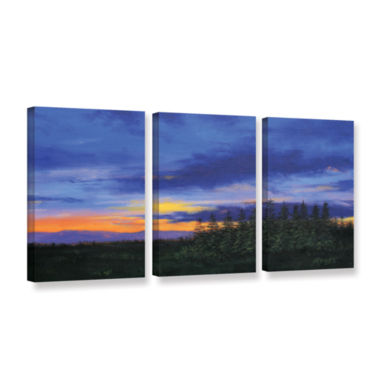 Brushstone Brushstone Constellations 3-pc. GalleryWrapped Canvas Wall Art