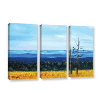 Brushstone Brushstone Serene Mountain Tops 3-pc. Gallery Wrapped Canvas Wall Art