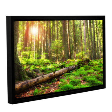 Brushstone Brushstone Back to Green Gallery Wrapped Floater-Framed Canvas Wall Art