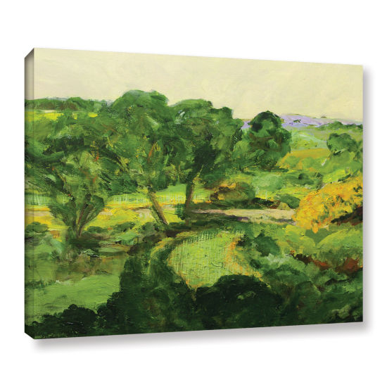 Brushstone Coton In The Elms Gallery Wrapped Canvas Wall Art