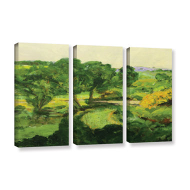 Brushstone Coton In The Elms 3-pc. Canvas Art