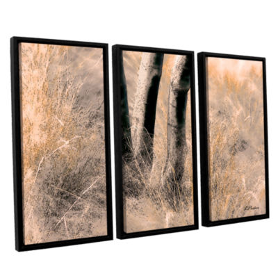 Brushstone Desert Grasses II 3-pc. Floater FramedCanvas Wall Art