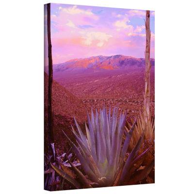 Brushstone Desert Cycle Gallery WrappedCanvas WallArt
