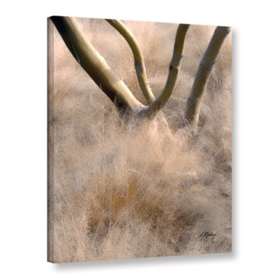 Brushstone Brushstone Desert Grasses Gallery Wrapped Canvas Wall Art