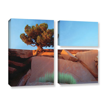 Brushstone Brushstone Dead Horse Point 3-pc. FlagGallery Wrapped Canvas Wall Art