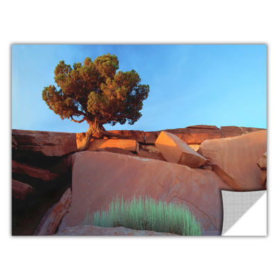 Brushstone Dead Horse Point Removable Wall Decal
