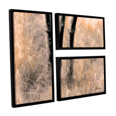 Brushstone Desert Grasses II 3-pc. Flag Floater Framed Canvas Wall Art