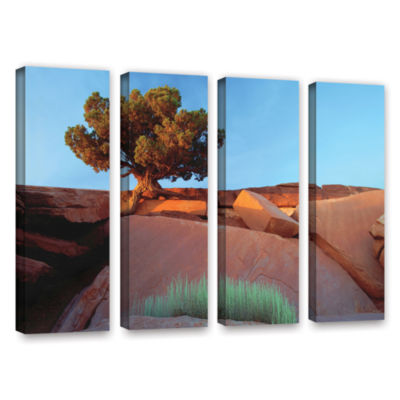 Brushstone Dead Horse Point 4-pc. Gallery Wrapped Canvas Wall Art