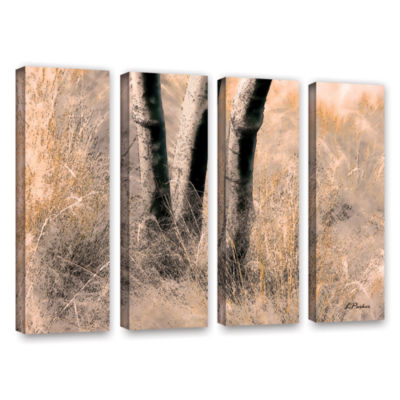 Brushstone Desert Grasses II 4-pc. Canvas Art