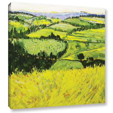 Brushstone Deep Valley Gallery Wrapped Canvas WallArt
